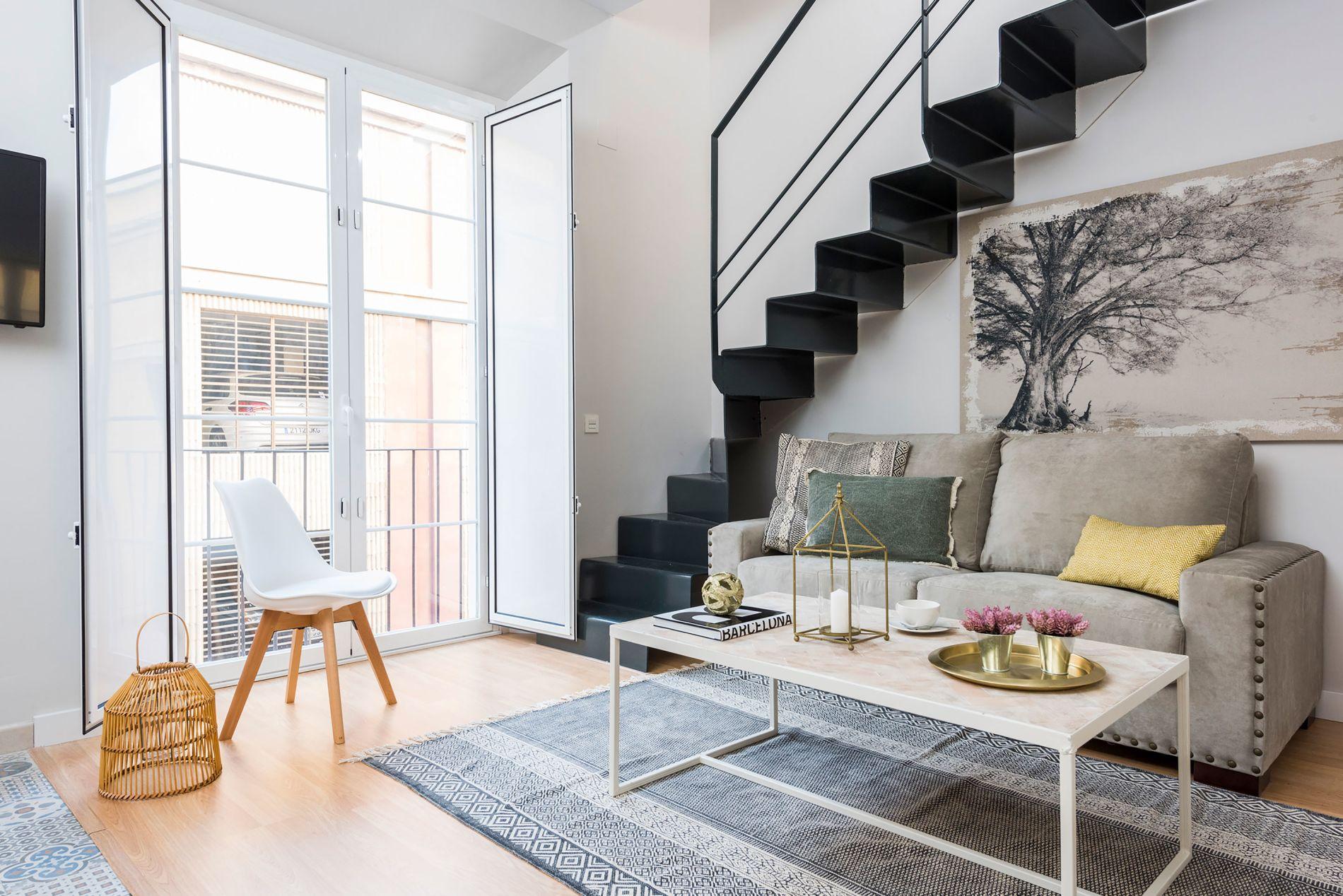 Pet-friendly apartment in prime location in Malaga