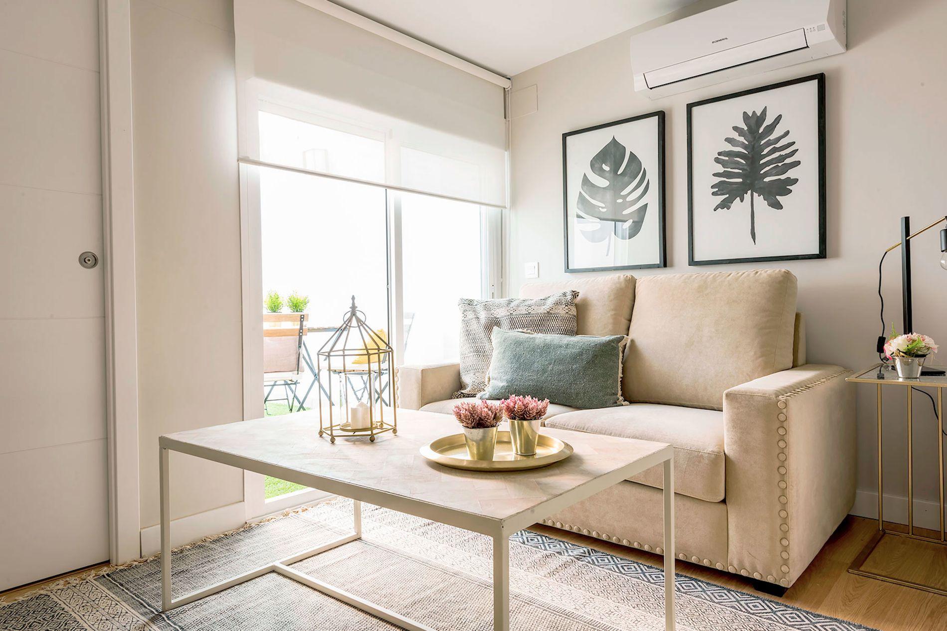 Pet friendly studio apartment in Malaga's Trinidad Grund Street